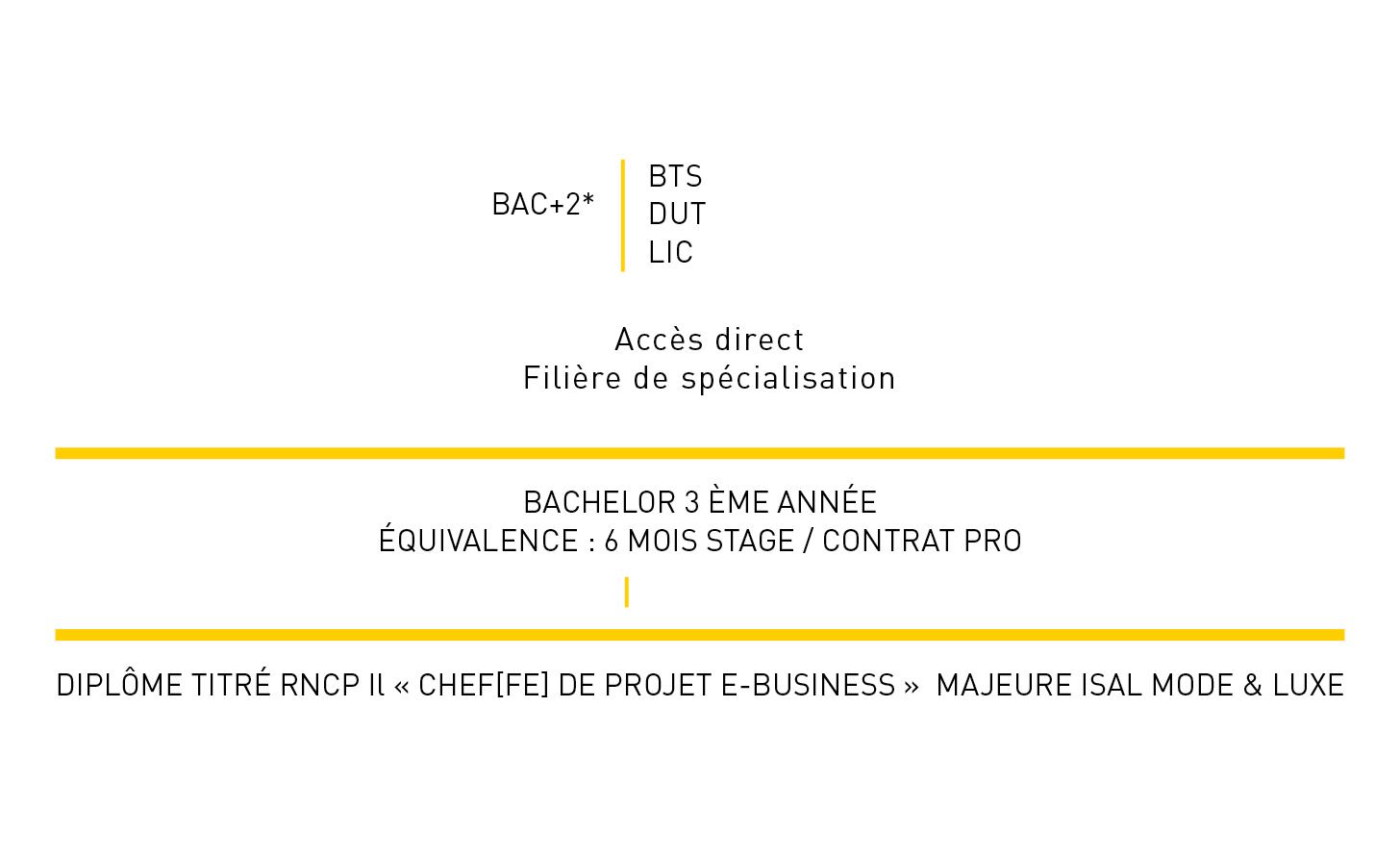 programme-bachelor-site